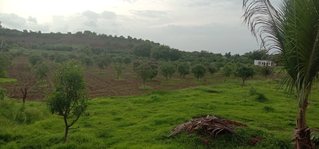 Farm Land Picture